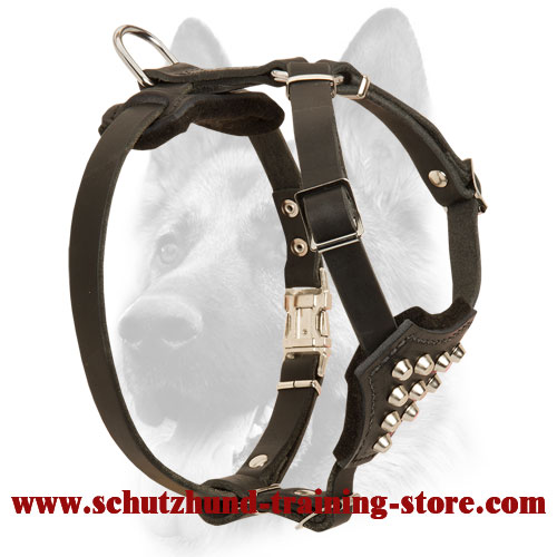 Leather Studded Puppy Harness for Safe Walking