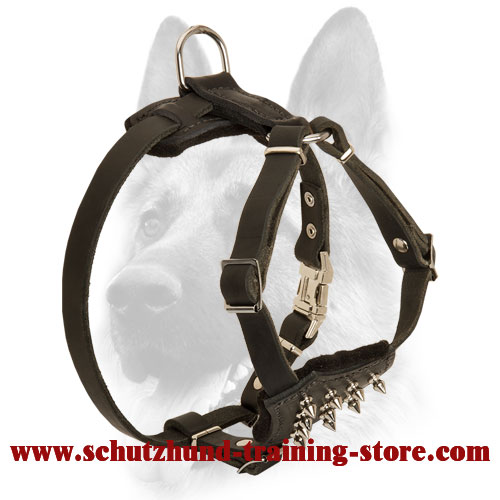 Comfortable and Safe Leather Spiked Harness for Puppies