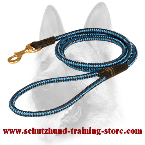 Strong Cord Nylon Leash for Dog Training and Walking