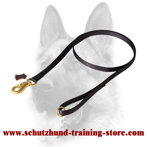 Durable Nylon Dog Training Leash