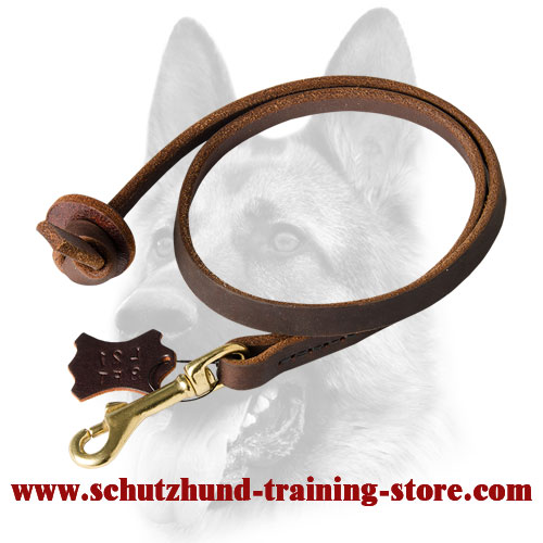 Professional Dog Training Leather Leash