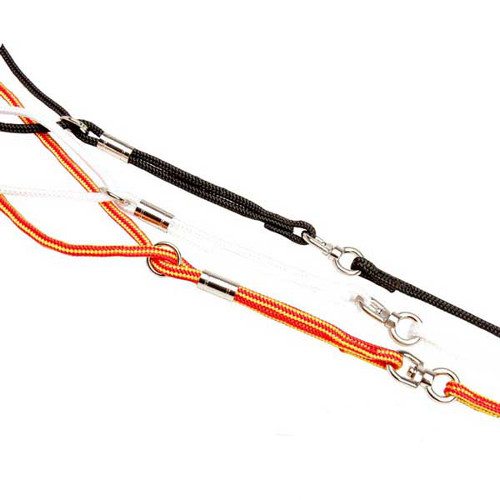 Showy Nylon Dog Combo Leash with Swivel