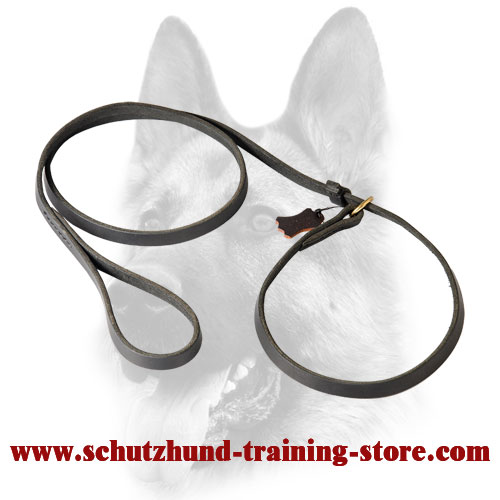 Splendid Leather Choke Collar Combo for Dog Training