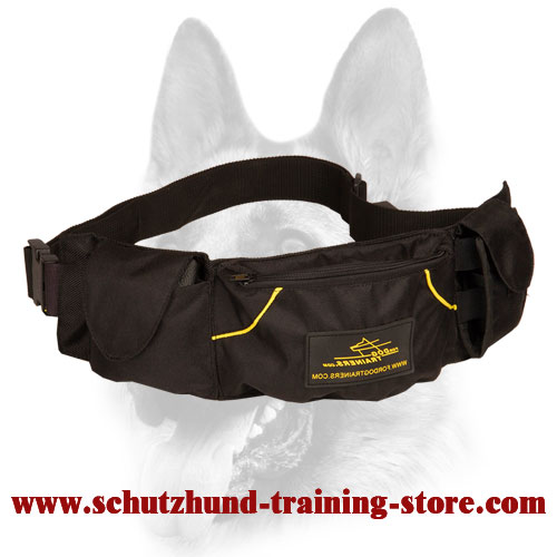 Convenient Dog Training Pouch for Treats and Toys