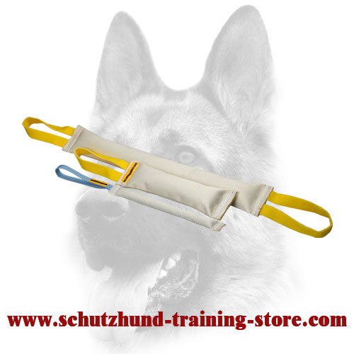 Fire Hose Set of Bite Tugs for Dog Training