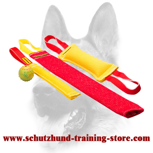 Fabulous Puppy Training Set of Bite Tugs
