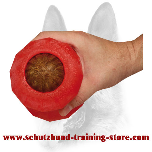 """Rolling Feeder"" Ball Made of Special Safe Foam Rubber - Large"