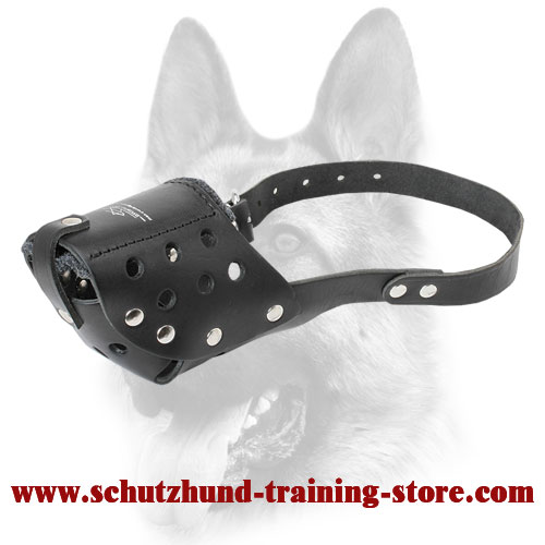 Free Breathing Leather Dog Muzzle for Medium Dogs Breeds