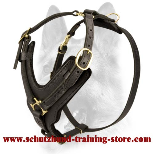 Leather Dog Functional Handcrafted Padded Schutzhund Harness