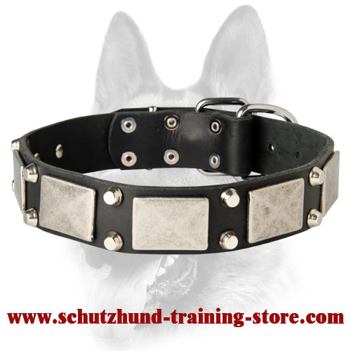 New Look Dog Leather Collar Decorated with Plates and Pyramids