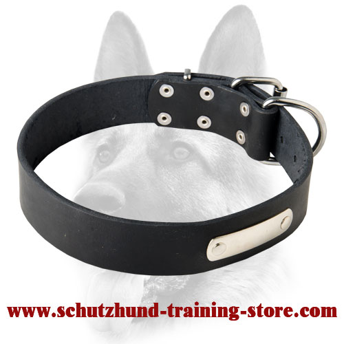 Custom Made Leather Dog Collar with ID Tag for Working Dog Breeds