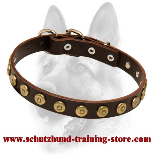 Special Gorgeous Leather Dog Collar With Dotted Circles