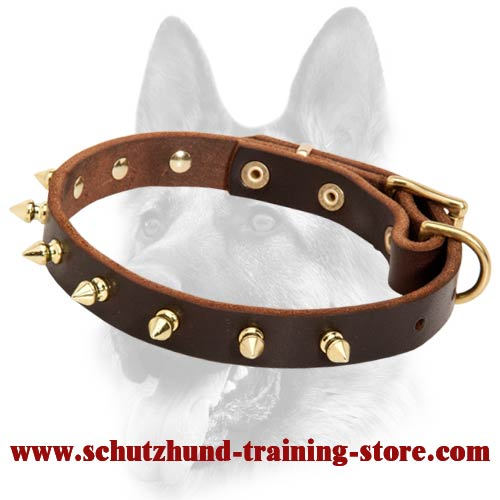 Spiked Leather Superb Decorated Dog Collar for All Dog Breeds