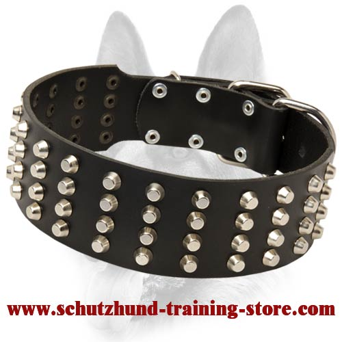 Custom Made Schutzhund Dog Breeds Training Collar