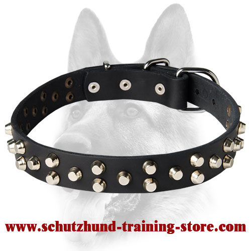 Fancy Design Dog Leather Collar