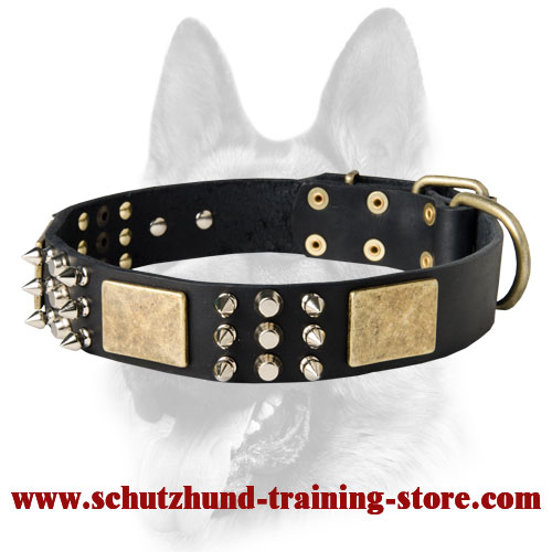 Exclusive Leather Dog Collar with 3 Elements of Decor