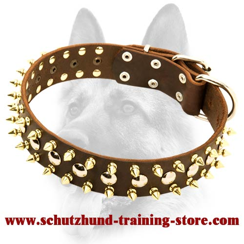 Studded and Spiked Leather Dog Collar With Multiple Capabilities for All Dog Breeds