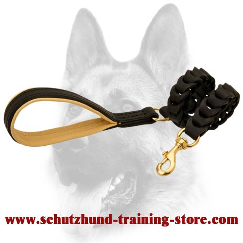 Uniquely Braided Leather Dog Leash for All Dog Breeds