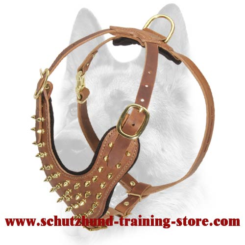 Exclusive Brass Covered Spiked Leather Dog Harness for All Dog Breeds