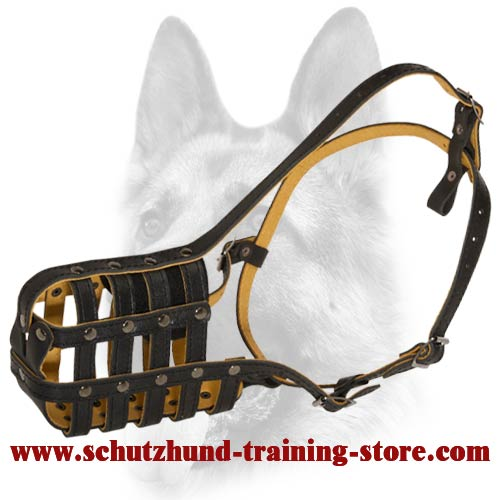 Light Weight Leather Basket Dog Muzzle for Obedience Training