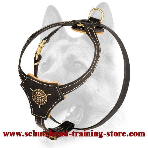 Nobby Small Handmade Leather Dog Harness-Designer Padded Puppy Walking Harness