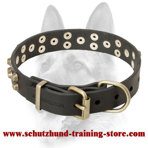 Attractive Stylish Leather Dog Collar for Working Canine