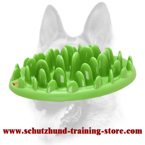 """Grassy Plate"" Interactive Pet Feeder for All Dog Breeds"