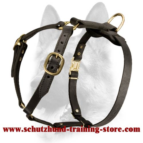 Luxury Handmade Leather Dog Harness for Schutzhund Training