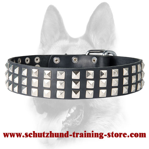 Silver-Like Pyramid Studded Leather Dog Collar for Schutzhund Training