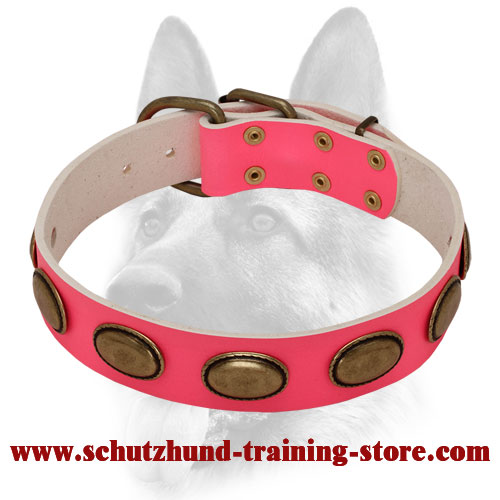 Pink Leather Dog Collar with Oval Vintage Plates for Training Females