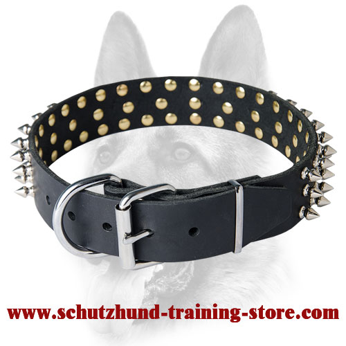 Leather Spiked Dog Collar for All Breeds
