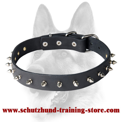 Medium Leather Dog Collar with 1 Row of Centered Spikes