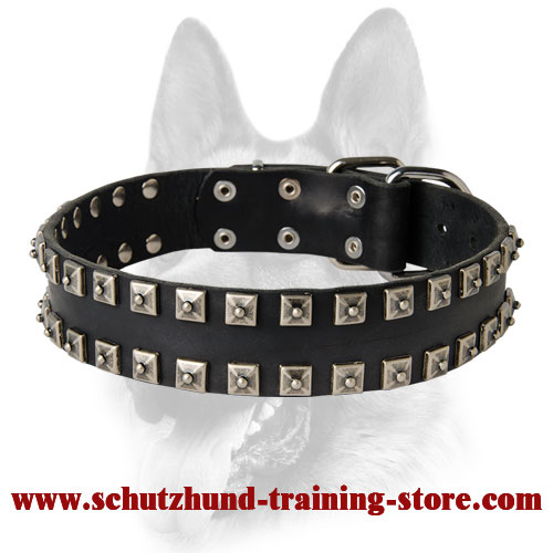 Unique Leather Dog Collar with Nickel-Plated Pyramids Set in 2 Rows