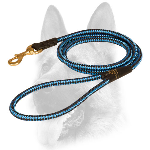 Bright innovative design of dog leash