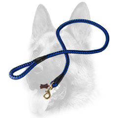 Nylon cord-looking dog leash