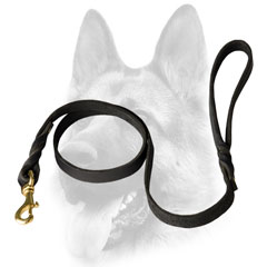 Gold color fittings for Dog leash