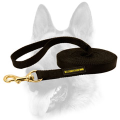 Any weather material for dog leash