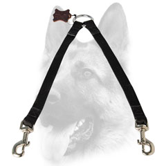 Nickel plated fittings for dog leash