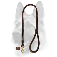 Outstanding braided leather dog leash