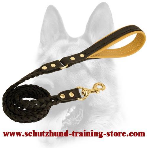 braided dog leash