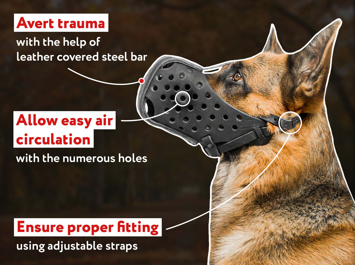 Best Leather Dog Muzzle for Attack/Agitation Training