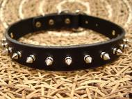 Medium Leather Spiked Dog Collar- 1 Row of spikes collar