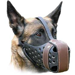 Safety and comfort in one muzzle