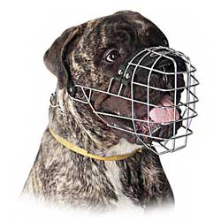 Perfect steel fine dog muzzle