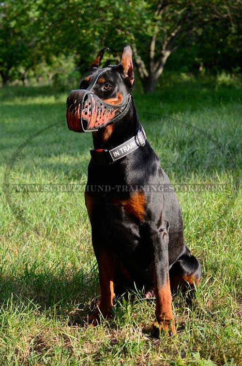 Handpainted Doberman Muzzle Made of Leather