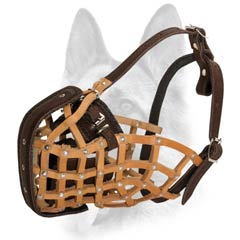 Cool muzzle for your pet