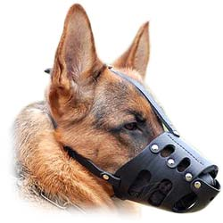 Modern incredibly snug leather dog muzzle