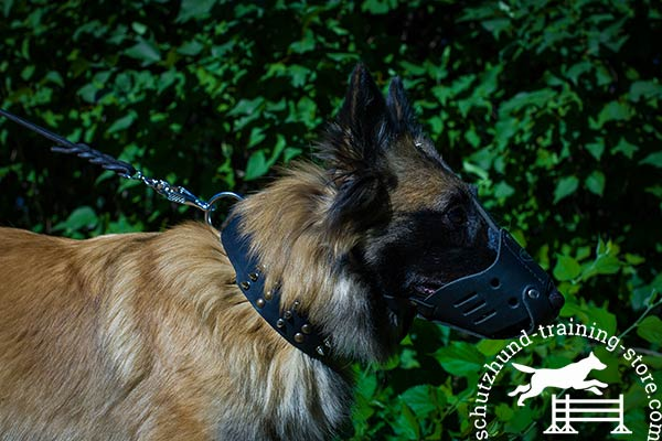 Anti-rubbing leather Tervuren muzzle