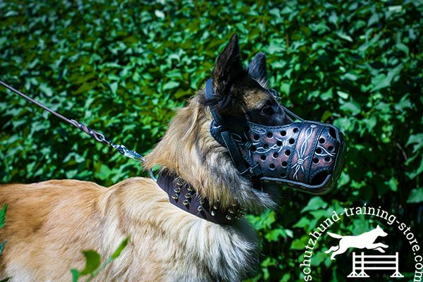 Pro leather Tervuren muzzle for attack training