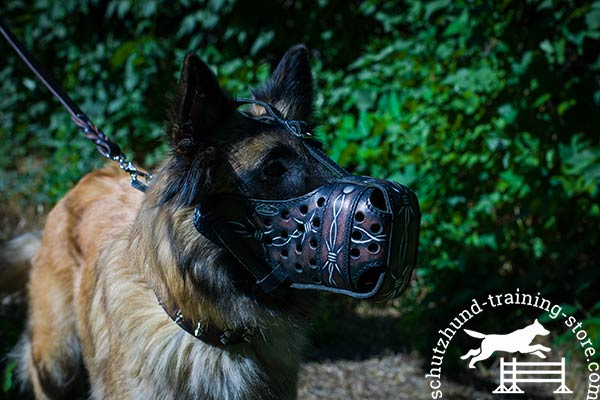 Leather Tervuren muzzle with special holes for ventilation